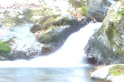 20081029瀬場谷の流れ3.jpg