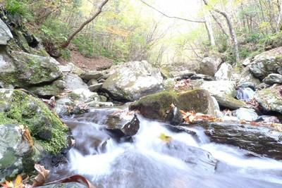 20081029瀬場谷の流れ4.jpg
