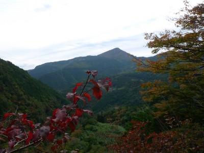 20081029東光森山を望む.jpg
