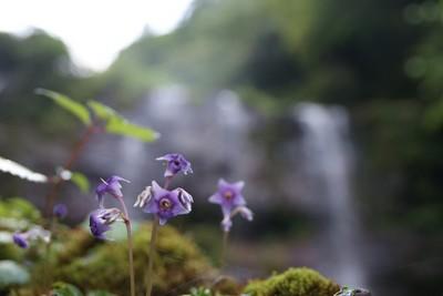 20110813akaboshiyama04.jpg