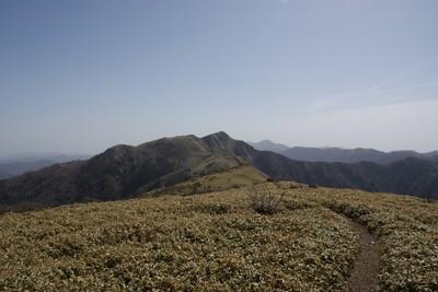 20120428tenguduka-miune19.jpg