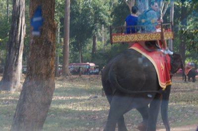 20140117SiemReap13_elephant.jpg