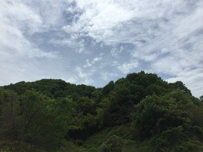 20190429Urayama10.jpg