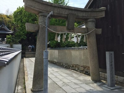 20190506Naoshima21.jpg